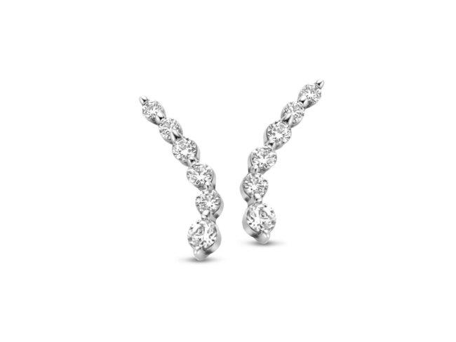 Naiomy Silver | Boucles d'Oreilles | Argent | B1H16